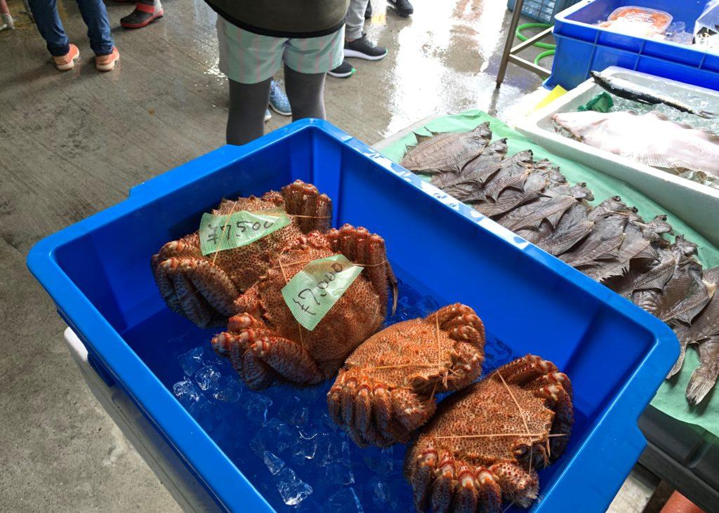 北海道伊達市レンタル釣り船、ヒラメ・カレイ・シャケ釣りの黄金マリン、鮮魚販売の「黄金市場」、販売用毛蟹イメージ画像