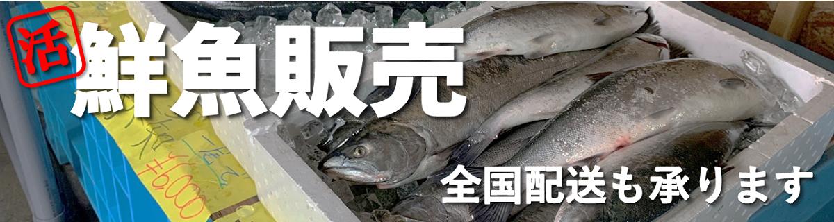 北海道伊達市レンタル釣り船黄金マリン鮮魚販売バナー